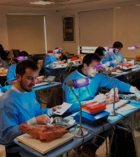 Diplomado en Cirugía Plástica Periodontal e Implantológica