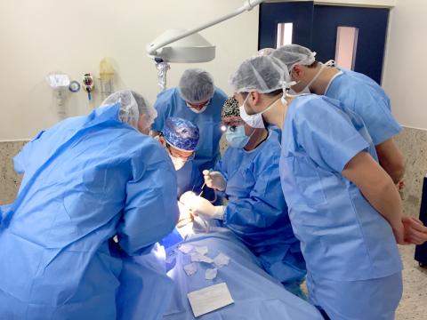 Primer Curso – Taller Avanzado de Cirugía Plástica Periodontal e Implantológica en Modelo Cadavérico